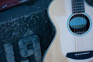 Breedlove guitars at New Braunfels Music